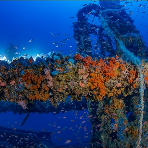 Kent Wreck under hundred diving , courstesy of Sergio Riccardo